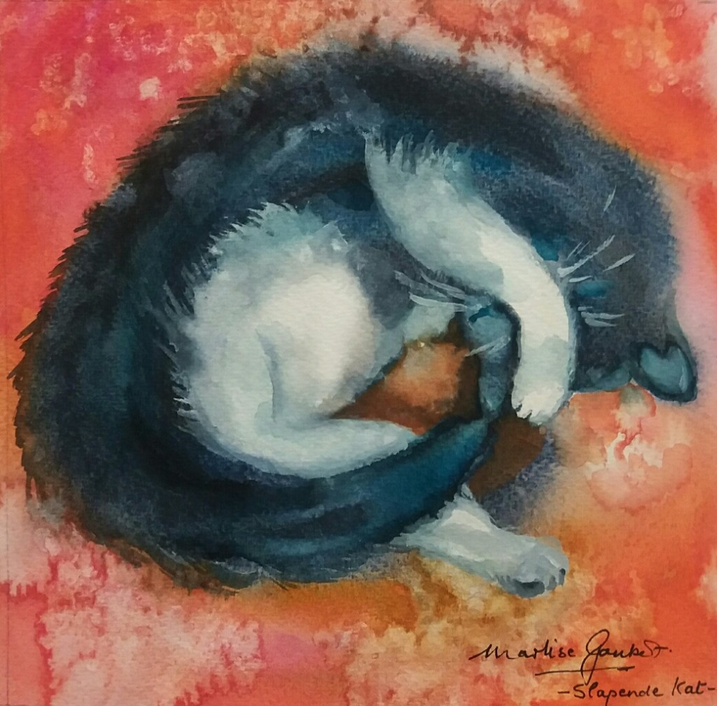 Slapende kat. 20x20. R900